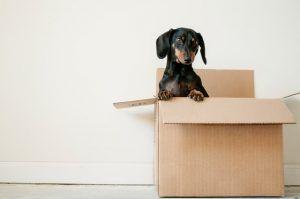 aide financement déménagement