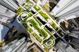 toitures végétalisées pour lutter contre le réchauffement climatique